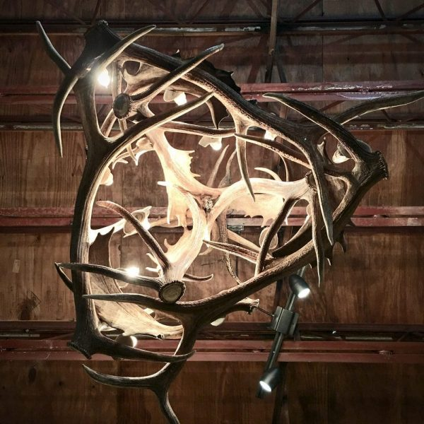 rustic antler lighting