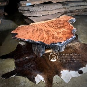 Curly redwood driftwood coffee table