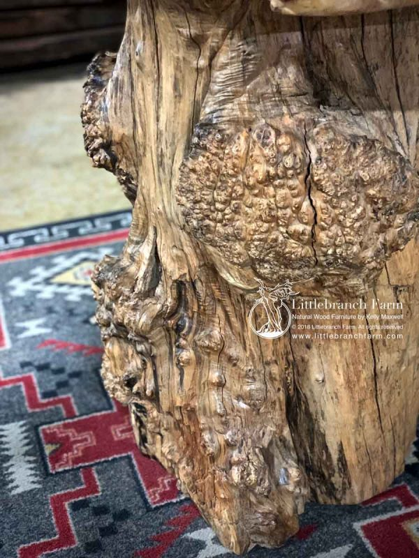 Cluster burl maple log