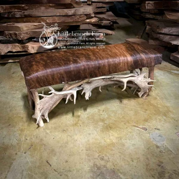 Natural antler bench with brindle cowhide.