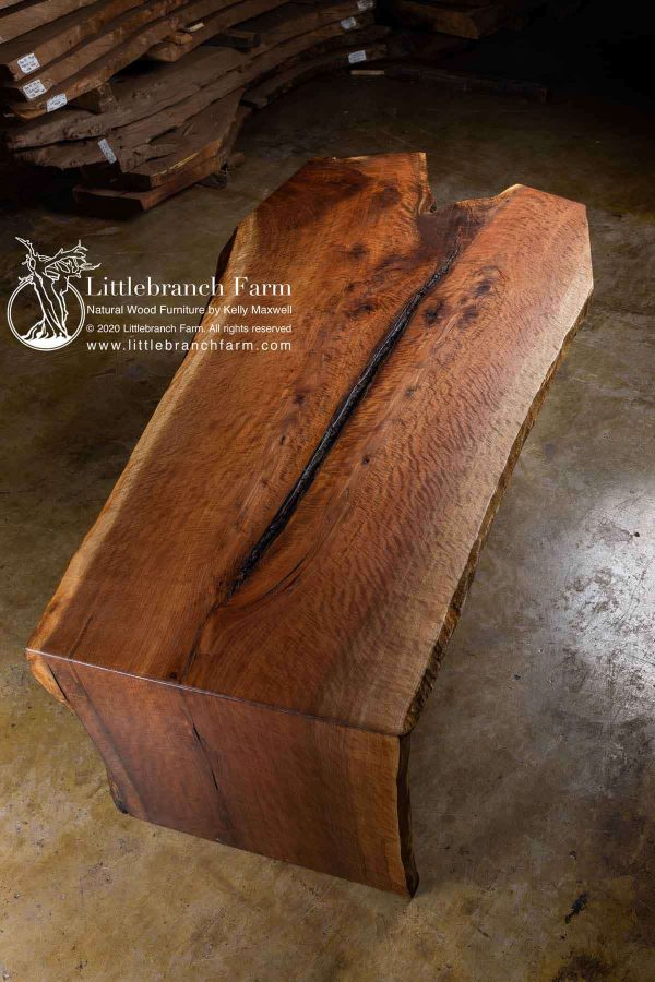 Fiddleback black walnut wood slab
