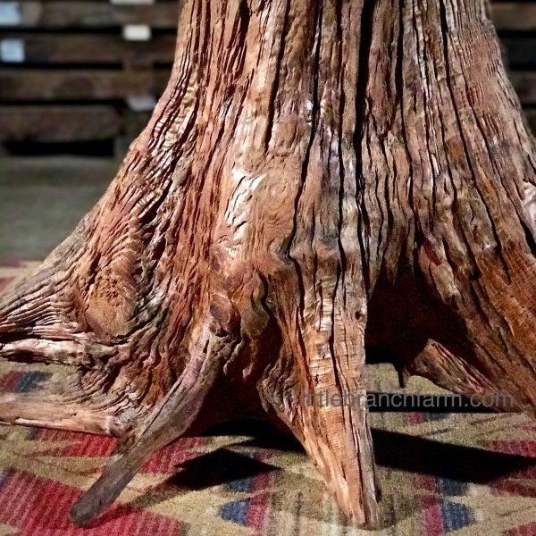 natural tree root base