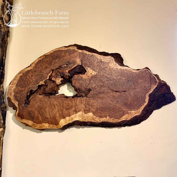 Burl wood redwood
