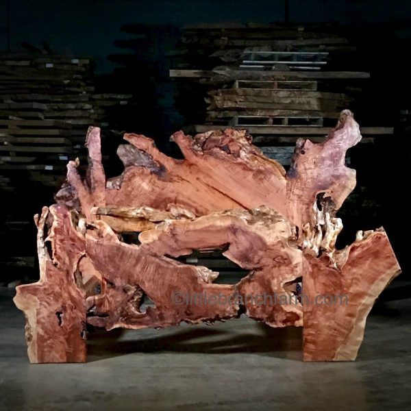 Redwood burl wood bed