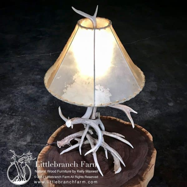 Real antler lamp