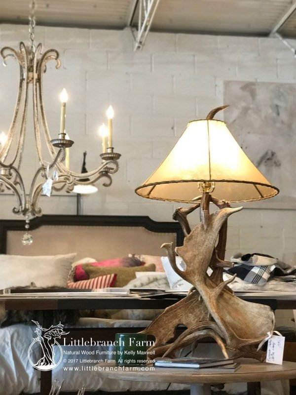 Antler table lamp and chandelier