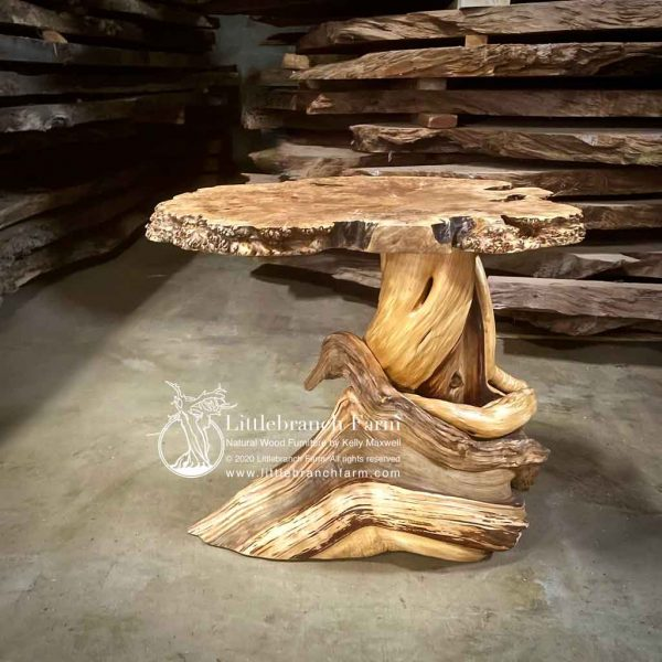 Burl wood table with twisted juniper log base