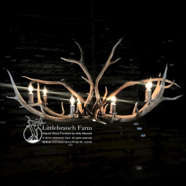 Elk antler chandelier with 8 lights