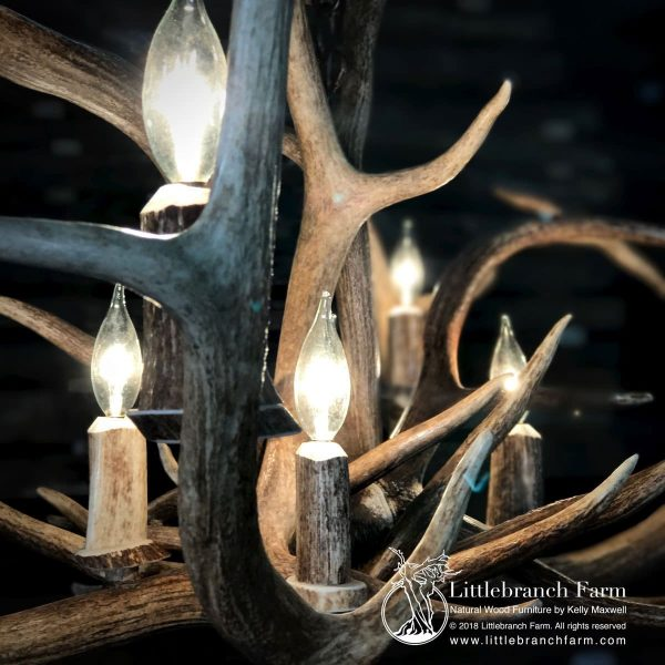 Closeup of antler light