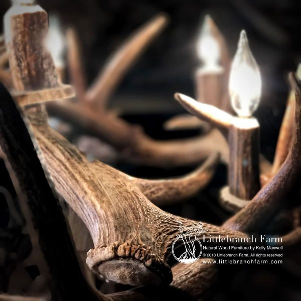 Detail of quality of antler chandelier