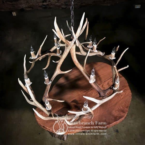 Elk antler chandelier over wood table