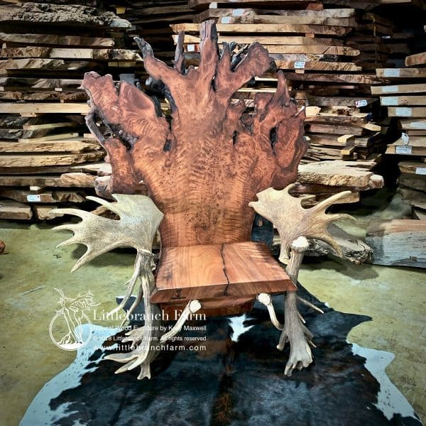 Medieval viking kings throne